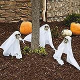 Fun Express - Skull Yard Stake W/Led for Halloween - Home Decor - Outdoor - Yard Art - Halloween - 3 Pieces
