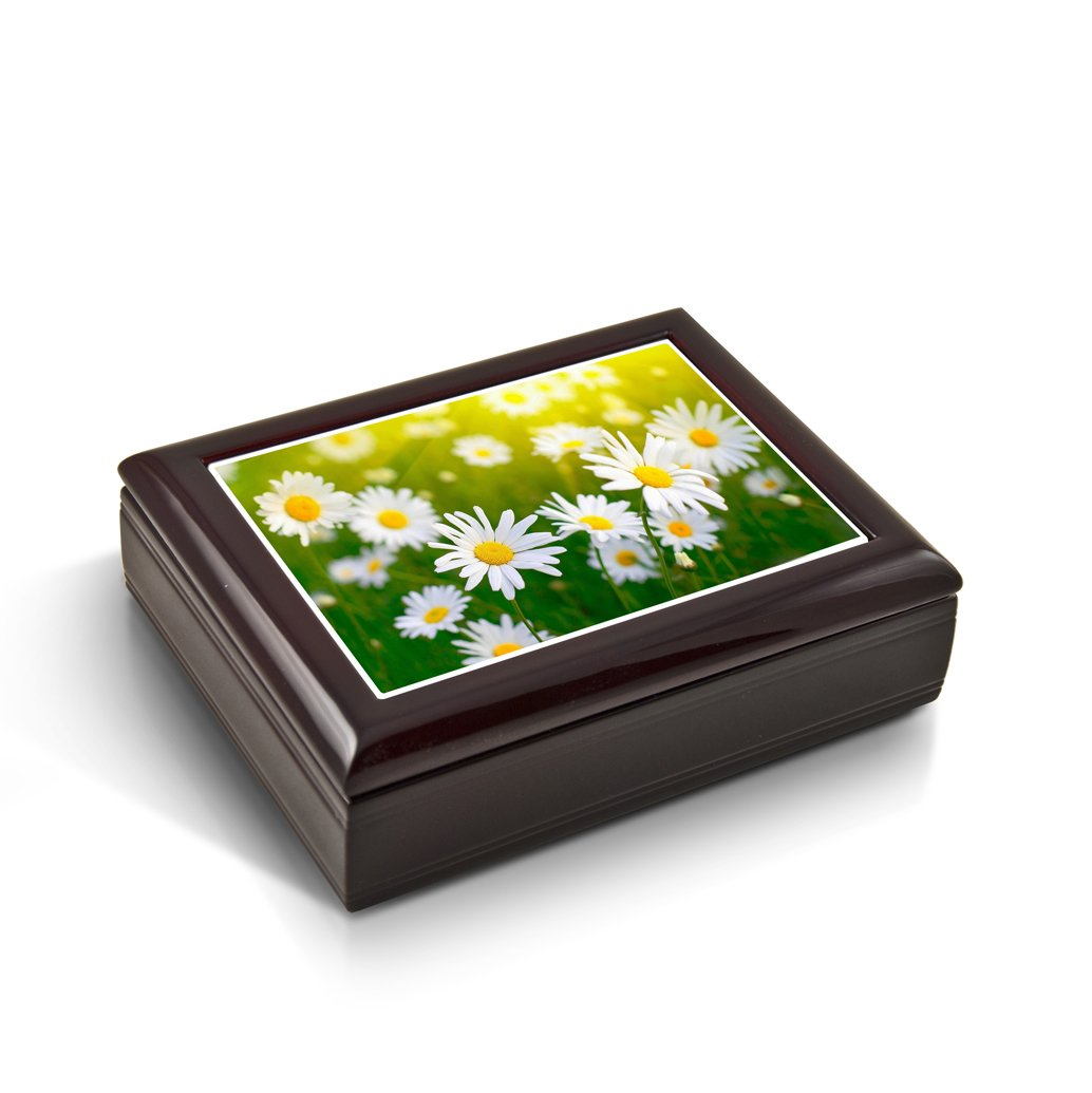 An Array Of White Daisies With Sun Rays Tile Musical Jewelry Box - In the Good Old Summertime