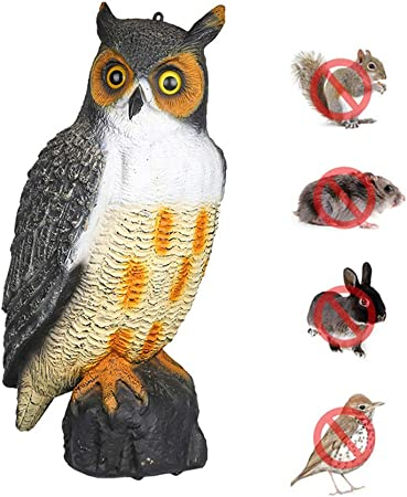 Wing Señuelo de búho, Estatua de búho, Aves/Palomas/gaviotas/Cuervo espantapájaros de plástico pájaro Repelente disuasorio para jardín Granjas Estanques,1pcs: Amazon.es: Hogar