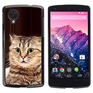 Vortex Accessory Carcasa Protectora Para Lg Google Nexus 5 D820 D821 - Playing Cat American Bobtail Manx Brown -