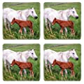 MSD Square Coasters Non-Slip Natural Rubber Desk Coasters design: 35134106 Mother horse with her colt on a farm in Central Kentucky