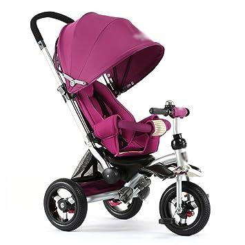 Triciclos Triciclo para niños Bicicleta reclinable Carrito de bebé para niños 3 ruedas Bicicleta para niños (Color : Purple) : Amazon.es: Juguetes y juegos
