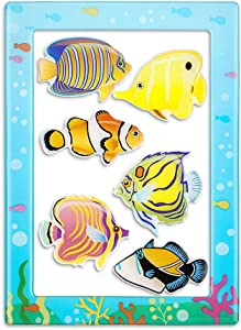 Fish Magnets for Fridge and Magnetic Photo Frame 7-in-1 Tropical Fish Gifts (6pcs Fish Refrigerator Magnets and 4 x 6 Inches Magnetic Picture Frame) (Tropical Fish A)