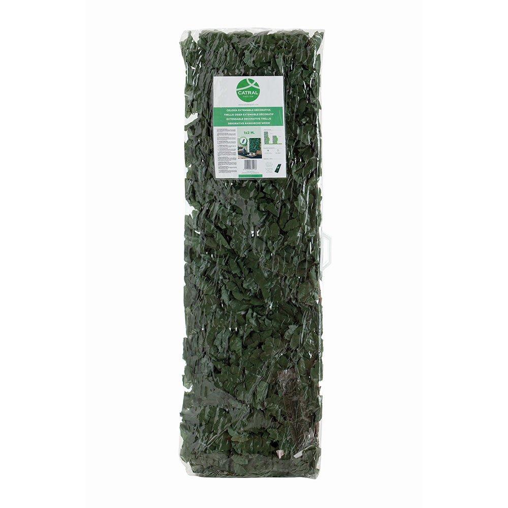 43040008 - Celosí a de mimbre con hojas Desconocido