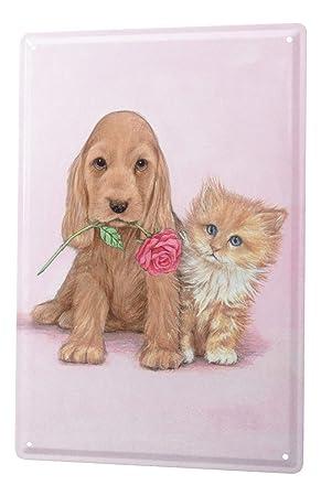 Cartel de chapa Placa metal tin sign Raza De Gato Perrito del gato del perro de Rose 20X30 cm: Amazon.es: Hogar