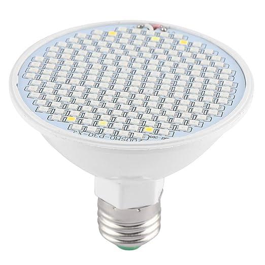 Riuty 4 Pack 200 LED Grow Light Bulbs, 24W E27 Full Spectrum Grow Plant Light Bulb para Plantas de jardín hidropónico de hortalizas de Interior: Amazon.es: Hogar