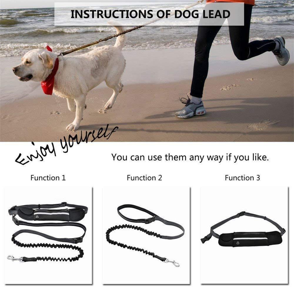 DXABLE Correa para perros manos libres con riñonera ergonómica - Combinación de correa para perros con cintura de 5.2 pies y bolsas múltiples para la ...