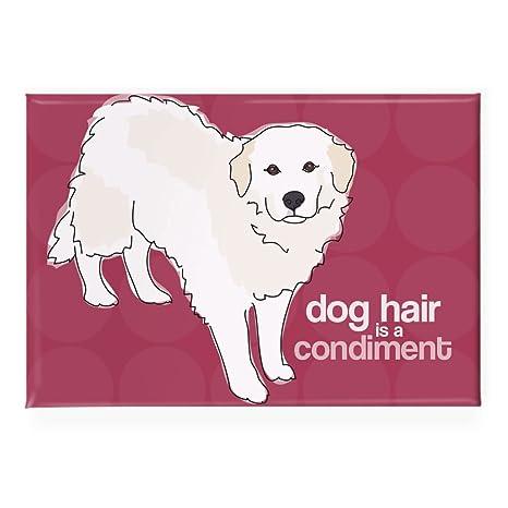 Amazon.com: Pop Doggie el pelo del perro es un condimento ...