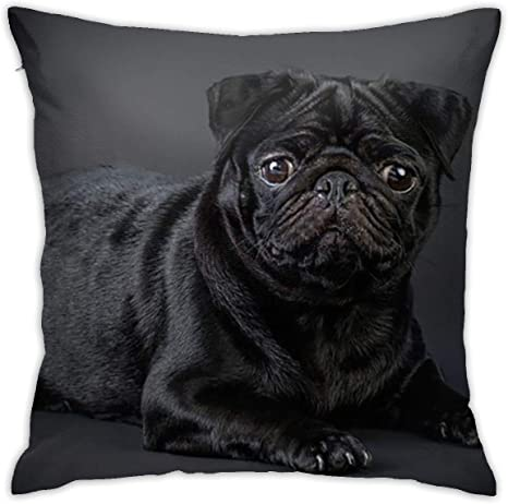 Amazon Com Feaiyea Black Pug Throw Cushion Cover Throw Pillow Cover Square New Living Series Decorative Throw Pillow Case Double Side Design 18 X 18 Family Indoor Sofa Car Home Kitchen