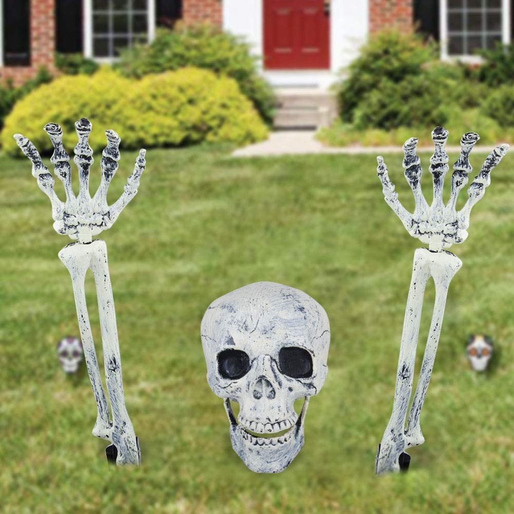 Amazon ToLanbbt Halloween Skull and Skeleton Décor