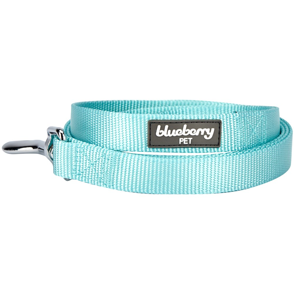 Blueberry Pet 19 Colors Durable Classic Dog Leash 5 ft x 5/8'', Mint Blue, Small, Basic Nylon Leashes for Dogs by Blueberry Pet (Image #3)