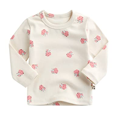 3a23499f6d74 Amazon.com: Agibaby Boys and Girls Infant & Toddler Long Sleeve Dino T-shirt  (Large / 3T/4T, Ivory): Clothing