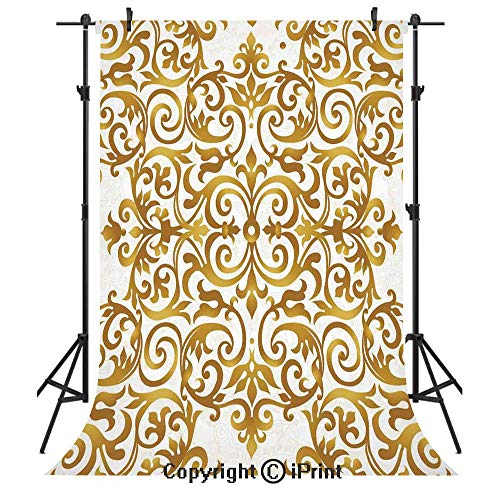 Kitchen Decor Photography Backdrops,Victorian Golden Lace Antique Baroque Pattern Oriental Ottoman Royal Square Pattern,Birthday Party Seamless Photo Studio Booth Background Banner 5x7ft,White Gold