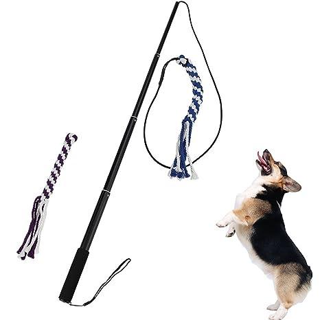 Legendog Dog Pared, Perro Parte Teaser Funny Ampliable Interactivo Perro Teaser Pared Mascotas Teaser Juguete