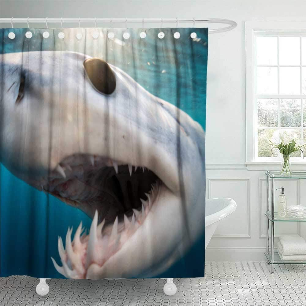 72X78 Shower Curtain,Douecish Shower Curtain Shark Diving in the Sea of with Coast Cabo San Mexico a Mako Lucas Cool Shower Curtain with Hooks Waterproof Eco-Friendly Long Shower Curtain for Bathroom