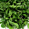 Arugula Seeds ? Certified ORGANIC NON-GMO Heirloom Arugula (Roquette or Rocket) Seeds (100+ seeds)