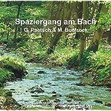 Spaziergang am Bach