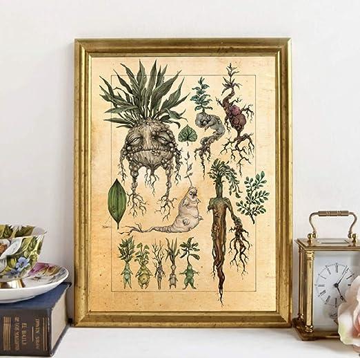 SCLPOSTER Cartel Moda Arte ilustración Linda Planta ...