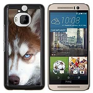 Siberian Husky de Alaska Malamute Perro- Metal de aluminio y de plástico duro Caja del teléfono - Negro - HTC One M9+ / M9 Plus (Not M9)