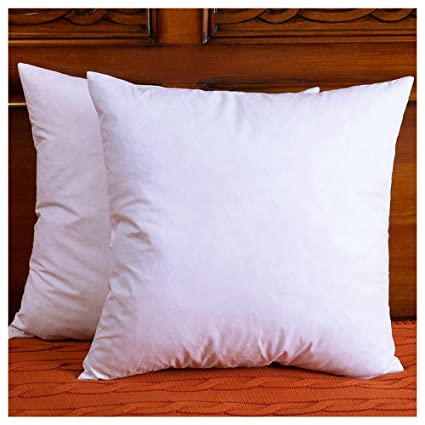 Amazoncom Downight Two Pillow Inserts Down And Feather Throw