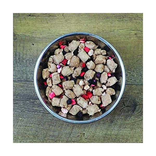 Stella & Chewy's Dried Meal Mixer Super Blends 4