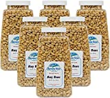 Harmony House Foods, Dehydrated Navy Beans (16 Oz Quart Size Jar) - Set of 6