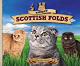 Sweet Scottish Folds, Katherine Hengel, 1617148334
