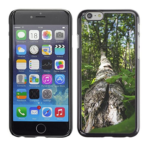 Premio Sottile Slim Cassa Custodia Case Cover Shell // M00153851 Trunk Cracked Fallen Arbre Bois // Apple iPhone 6 6S 6G PLUS 5.5""