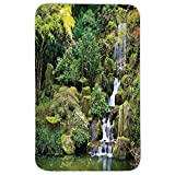 Rectangular Area Rug Mat Rug,Country Home Decor,Pond in Asian Style Garden Arboretum Trees Bush Foliage Rocks Waterscape Picture,Green White,Home Decor Mat with Non Slip Backing