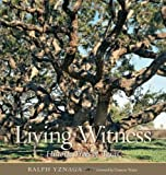 Living Witness, Ralph Yznaga, 1603445765