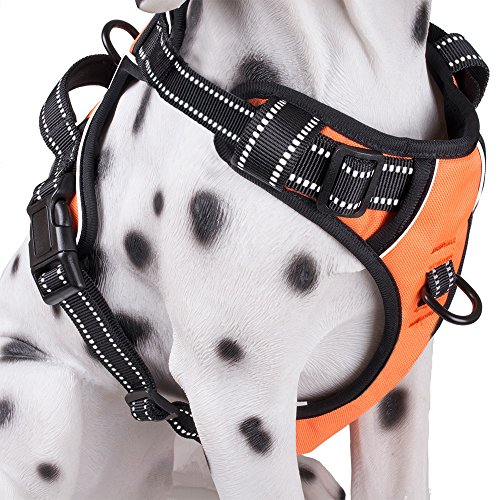 PoyPet No Pull Dog Harness, Reflective Vest Harness with 2 Leash Attachments and Easy Control Handle(Orange,XL)