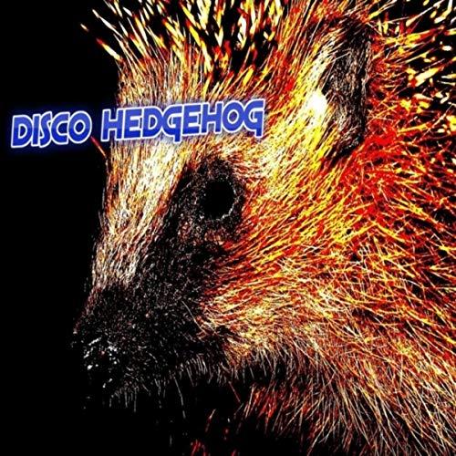 Disco Hedgehog