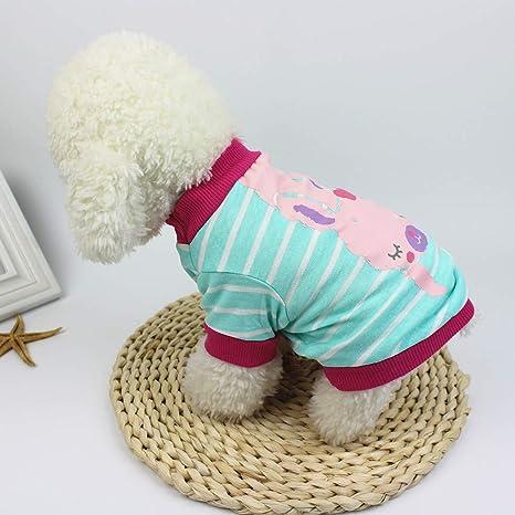 Ropa para Mascotas,Dragon868 Perro Ropa Perro Camisetas Mascotas Ropa para Perros: Amazon.es: Ropa y accesorios