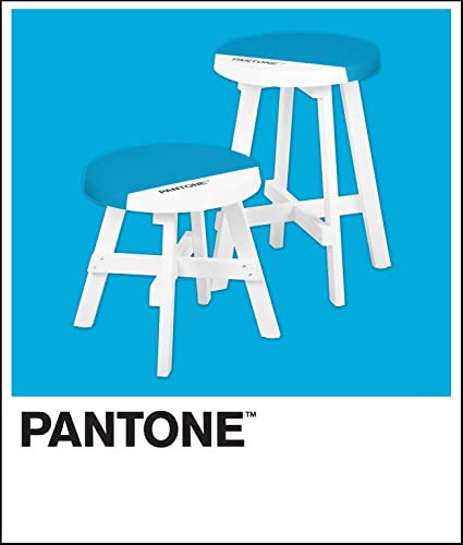 Pantone Contemporary Short and Tall Round Stools Set of Two