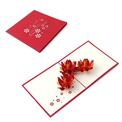 Amazon.com : Wivily Water Lotus 3D Pop Up Greeting Card Handmade ...