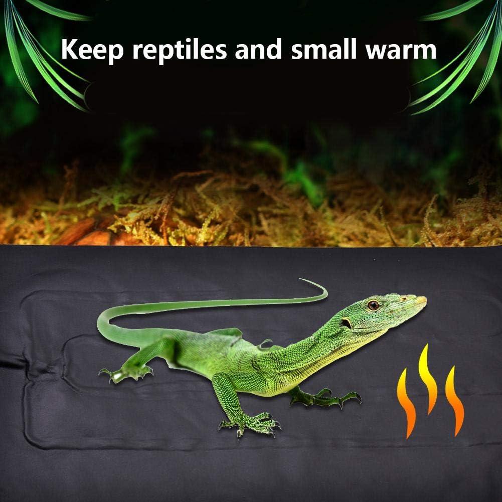 einstellbare Reptilien-Heizmatte USB-Heizmatte f/ür Reptilien cineman Reptilien-Heizmatte Echsen Tankw/ärmer-Matte mit Zeitschaltertemperaturregelung Schlangen Schildkr/öten