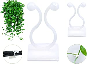 Plant Climbing Wall Fixture Clips, (100pcs) Plant Fixer Self-Adhesive Hooks for Invisible Wall Vines Plant Fixation, Plant Vine Traction, Garden Vegetable Plant Binding