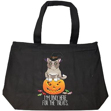 Amazon.com: Gato en calabaza – Funny Halloween Otoño disfraz ...