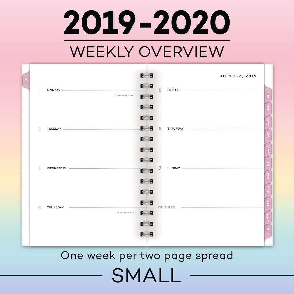 Amazon.com : Matt Crump 2019-2020 Academic Year Weekly ...