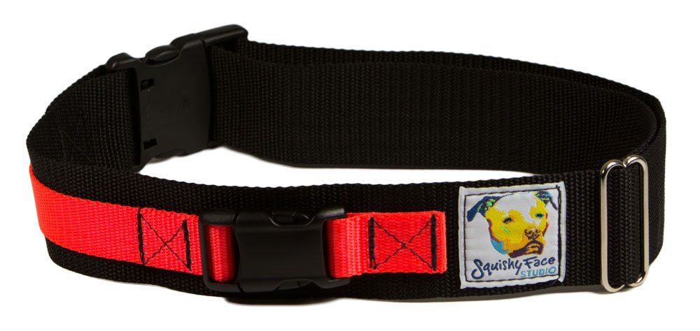 Squishy Face Studio Hands Free Dog Leash Belt, Small/Medium, Neon Orange