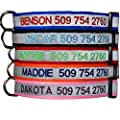 Embroidered Reflective Safety Personalized Dog Collar - Adjustable with Plastic Snap Closure by GoTags