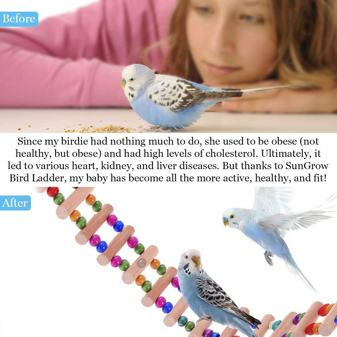 SunGrow Bird Ladder Bridge, 20 Inches Long, Helps Birds with Balance, Made with Raw Wood and Edible Dye, Easy Installation, Bright, Durable and Flexible, Suitable for Small to Medium Birds, 1 Piece : Pet Supplies