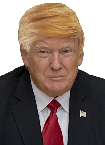 Amazon.com  Funny Donald Trump Wig for Adults Kids Trumps MAGA President Hair  Costume Wigs  Clothing 25c0b303f