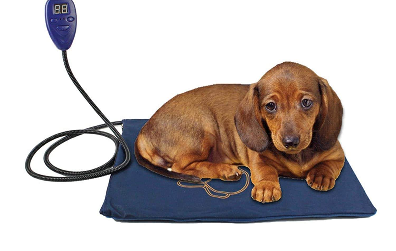 Manta eléctrica para Mascotas, Resistente al Agua, antimordiscos, para Calentar, tamaño Grande y pequeño, para Gatos y Perros, para Temperatura Constante, ...