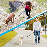 SparklyPets Hands-Free Dog Leash for Medium and