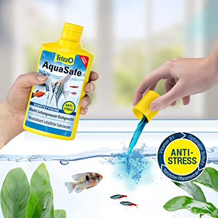 Tetra AquaSafe 500 ml: Amazon.es: Productos para mascotas