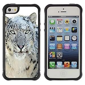 LASTONE PHONE CASE / Suave Silicona Caso Carcasa de Caucho Funda para Apple Iphone 5 / 5S / Snow Leopard Tiger Furry Winter Animal