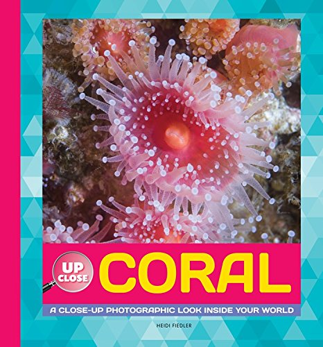 Read Online Coral: A Close-up Photographic Look Inside Your World (Up Close) ebook