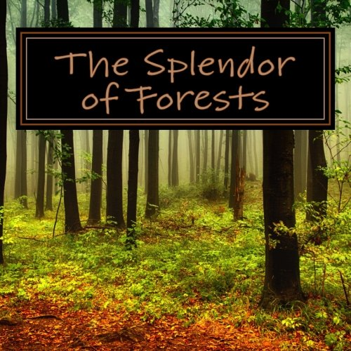 Splendor Forests Picture Alzheimers Patients product image