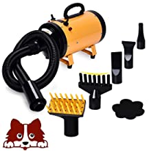 Free Paws 3.2HP 2 Speed Adjustable Heat Temperature Pet Dog Grooming Hair Dryer